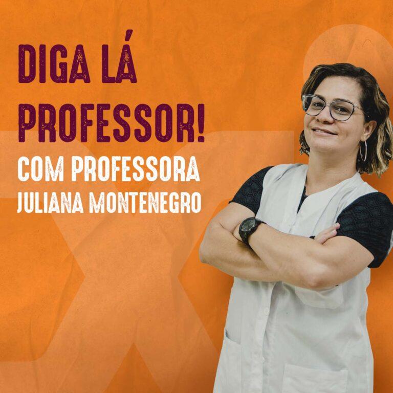 Profª. Juliana Montenegro – Linha do tempo da história da arte